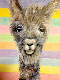 My junior year of college I tried to work with mixed media projects. This drawing of a llama has acrylic paint, charcoal, pencil and pen.